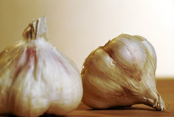 Garlic is not a rich source of selenium.