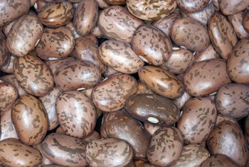 Pinto beans are a healthy source of protein and fiber.