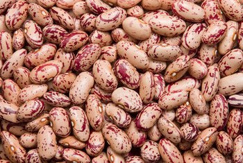 Beans deliver fiber and nutrients.