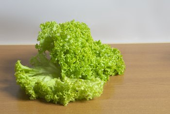 You would eat lettuce near the begining of a meal on the sequential diet.