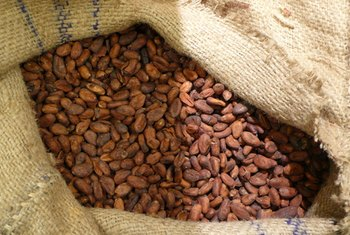 Raw cacao nibs are roasted cacao beans made into raw chocolate.