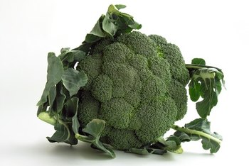 Broccoli contains prebiotics, but no probiotics.