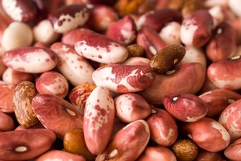 In general, dried and canned beans are nutritionally similar.