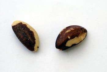 Brazil nuts are exceptionally rich in selenium.