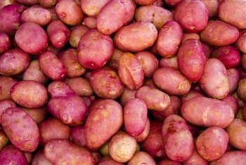Any type of potato is tasty sauteed, but new potatoes cook quickly.