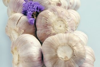 Eating garlic daily may help keep you healthy and illness-free.