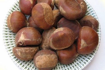 Roasted chestnuts make good additions to your diet.