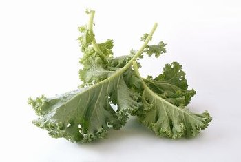 Kale is one of the best sources of vitamin K.