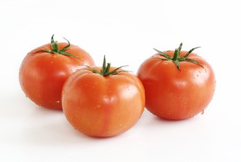 Growers can harvest hydroponically cultivated tomatoes year-round.