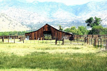 Maintain complete documentation of ranch improvements to deduct them for tax purposes.