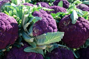 Purple pigments in some fruits and vegetables provide antioxidant effects that may protect your brain.