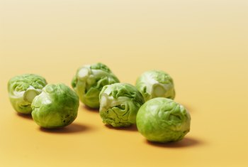 Brussels sprouts are a rich source of dietary fiber.
