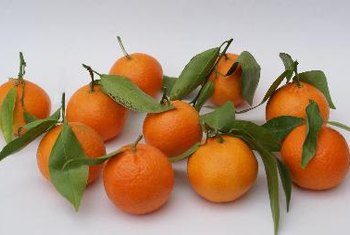 Compared to oranges, tangerines are more tart.