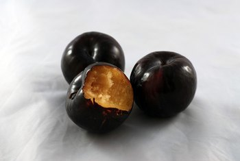 Prune juice starts life as a plum.