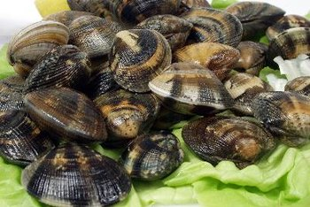 Clams pair well with many types of vegetables and grains.