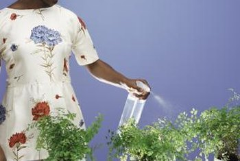 When mixed properly, insecticidal soap spray is safe for indoor plants.