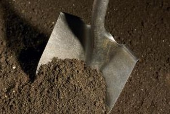 Manually breaking up dirt clods is a physically demanding task.