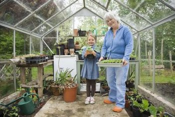 Greenhouses allow children of all ages to garden even in cold weather.