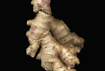 Ginger is an underground stem, or rhizome, of the ginger plant.