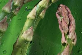 Planting all-male varieties of asparagus increases production.