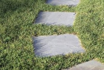 Use your butterfly tile mosaic stepping stone as a decoration instead of in a high-traffic walkway.