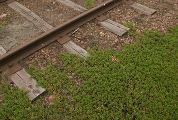 Railroad ties are a repurposed material for use in the landscape.