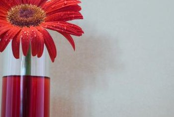 Cylinder vase decorations can range from simple to elaborate.