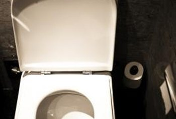 Old toilets use about 3.5 gallons of water in every flush.