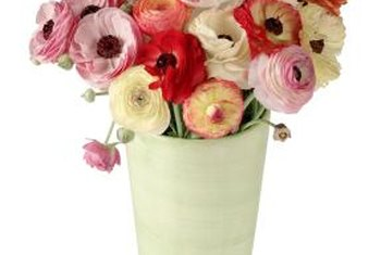 This arrangement of a variety of ranunculus will likely remain fresh for a week.