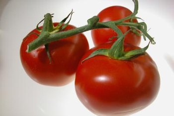 Not all tomato plants produce tomatoes in clusters.
