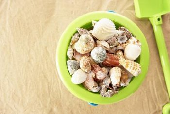 Seaside strolls yield buckets of ocean treasures.