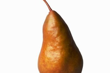 Sweet and juicy Bosc pears are worth extra effort to grow on your property.