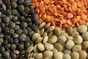 Lentil varieties include red, orange, yellow, green, black or brown.