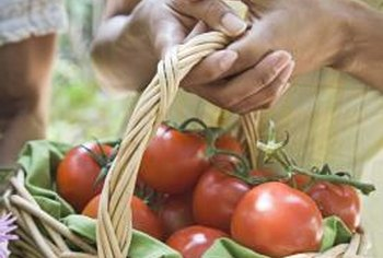 Early-season tomatoes extend the growing season.