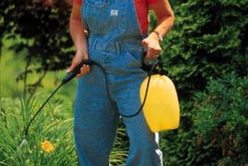 Fill your garden sprayer with a home mixture for killing weeds.