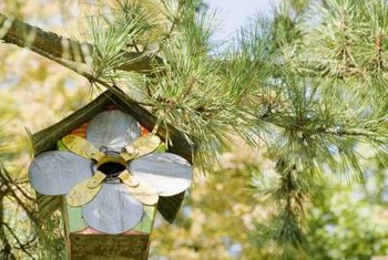 Hang birdhouses securely so birds feel safe.
