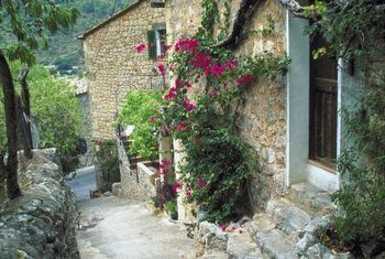 A wall will serve to protect your bougainvillea during cold weather.