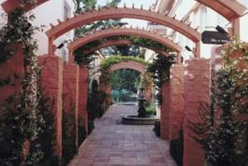 Climbing plants create aesthetic value planted against arches.
