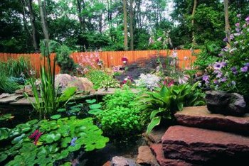 A freeform pond can look like a natural feature in your yard.