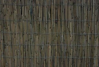 Use cane cladding, woven together with strong wire, to conceal unsightly fences.