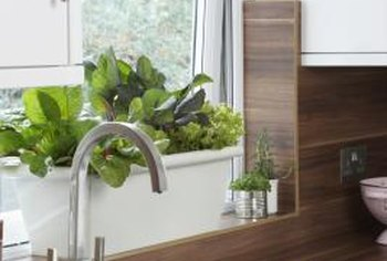 Reduce trips to the sink with a self-watering planter.