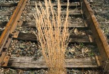 Abandoned railroad ties often show up in gardens where they leach creosote into the soil.