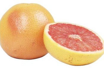 Grapefruit trees from cuttings will produce the same quality fruit as the parent tree.