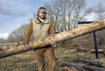 Logs vary in weight according to their tree species and level of dryness.