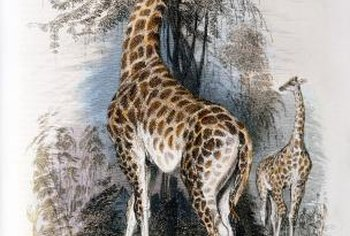 A giraffe painting enhances a jungle nursery theme.