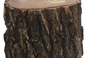The color and texture of bark on some logs make them ornamental landscape features.