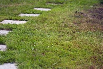 Overgrown stepping stones may be removed for replacement or replaced with grass.
