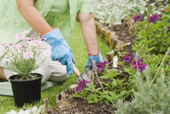 Working with a weed-free space makes it easier to space and place flowers.
