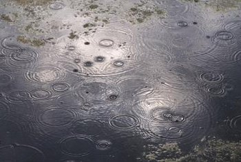 Heavy rains can saturate a septic drainfield and cause problems.