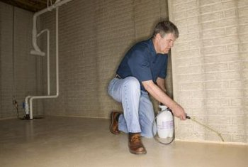 You can save money when fumigating your home, whether you do it yourself or hire a professional.
